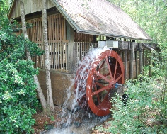 Blackwater State Park  FL  9ft Waterwheel Factory